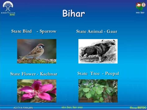 A glimpse of bihar : People who wrote the history of bihar