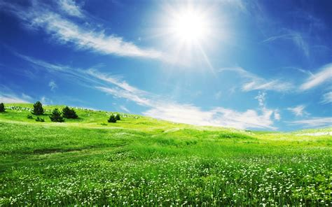 The Smile Of Sun Over The Beautiful Nature Hd Wallpaper